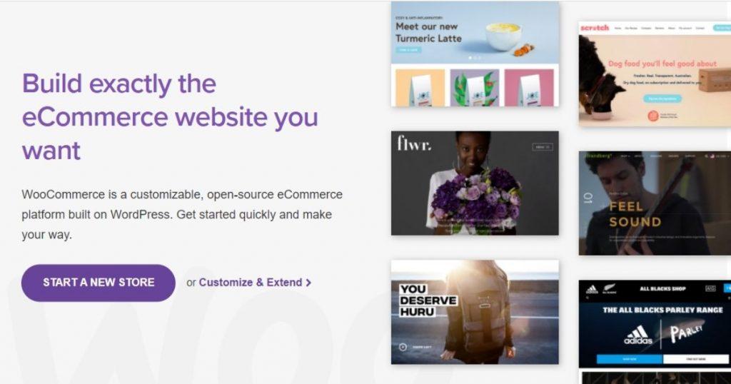 plugin woocommerce pentru magazin online